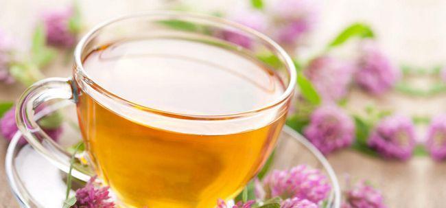 10 Wunderbare gesundheitlichen Vorteile von Alfalfa Tee Foto