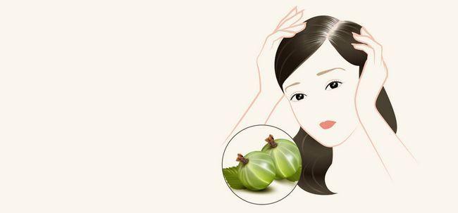 4 Natürliche Heilmittel zur Behandlung von Graues Haar Mit Amla Foto