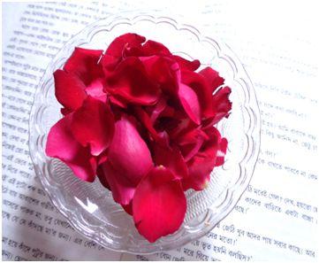 Rosenblätter für strahlende Haut