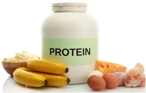 Proteine bei der Gewichtszunahme