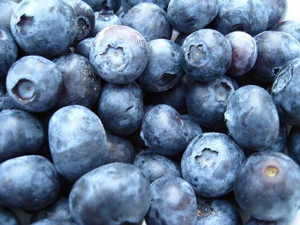 blueberry Gesichtsmaske Vorteile