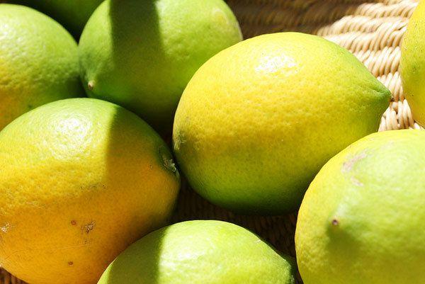 Heidelbeeren und Zitronen-Maske