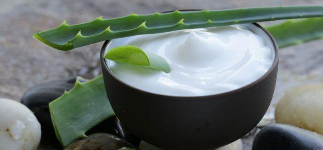 Wie sollten Sie Aloe Vera verwenden, um Dehnungsstreifen Saures? Foto