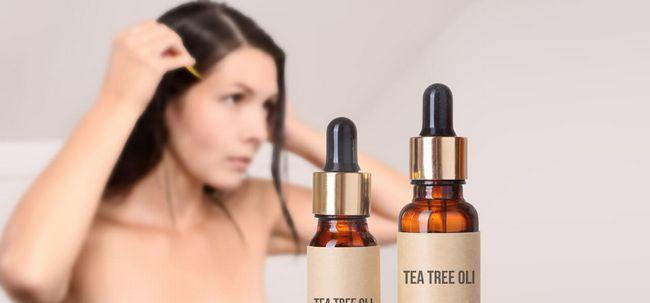Wie Teebaumöl Rid von Läusen zu bekommen? Foto
