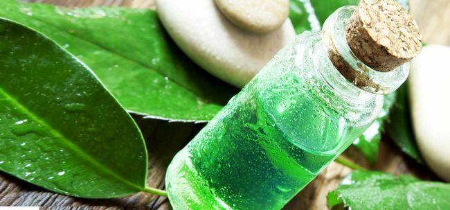 Ist Teebaumöl hilfreich bei der Heilung von Schuppen? Foto