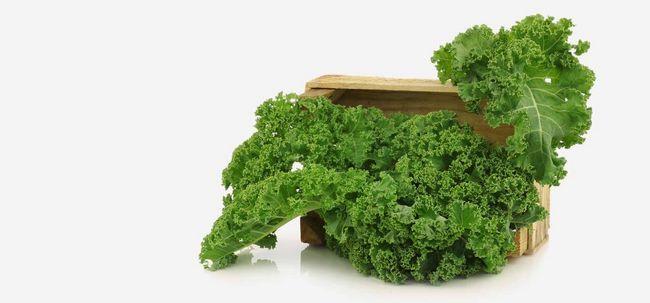 Top 10 Low Calorie Gemüse, die Sie in Ihrer Ernährung enthalten sollte Foto