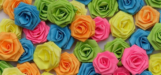 Top 10 Most Beautiful Papier Roses Foto