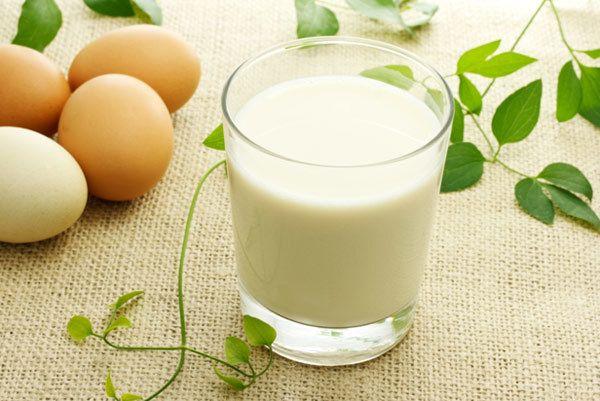 versuchen, Ei oder Milch Behandlung