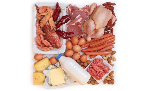 proteinreiche Nahrung